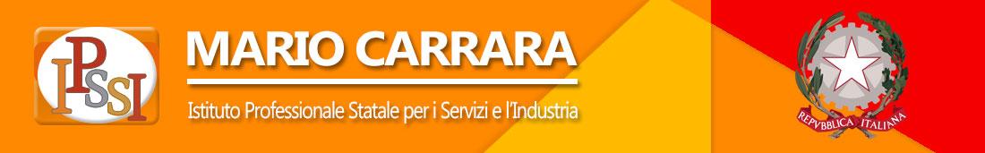 IPS Mario Carrara - Guastalla (RE)